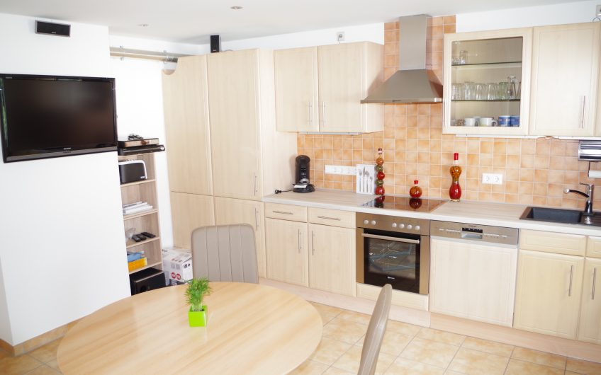 **Beautiful furnished 2.5 room apartment with air conditioning in S-East**